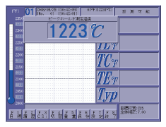 Screen of peak holding thermometer display image